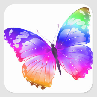 Multi coloured butterfly square sticker