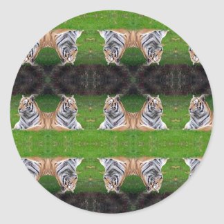 multi tiger round stickers