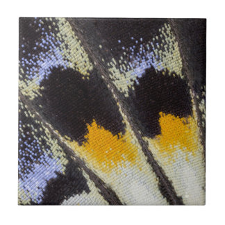 Multicolor butterfly wing pattern ceramic tile