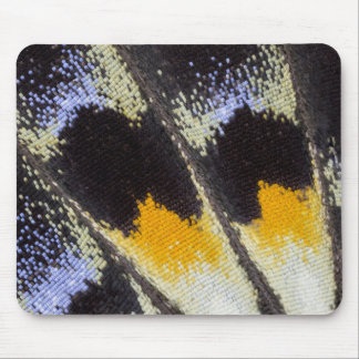 Multicolor butterfly wing pattern mouse pad