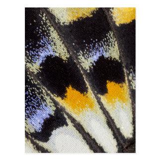 Multicolor butterfly wing pattern postcard