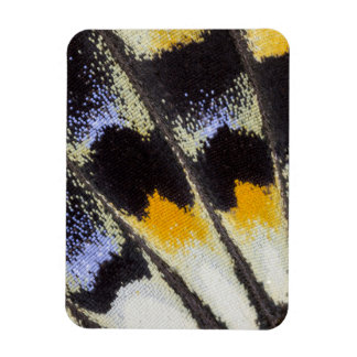 Multicolor butterfly wing pattern rectangular photo magnet
