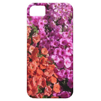 Multicolored petunia flowers texture background case for the iPhone 5