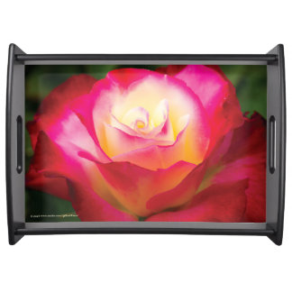 Multicolored Rose - LARGE Serving Tray
