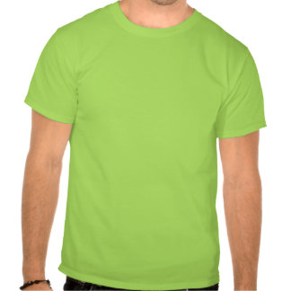 Multicolored Tribal Fish on Lime T-shirt