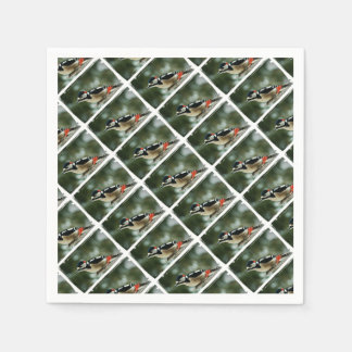 Multicolored woodpecker - Photography Jean Louis Disposable Napkins