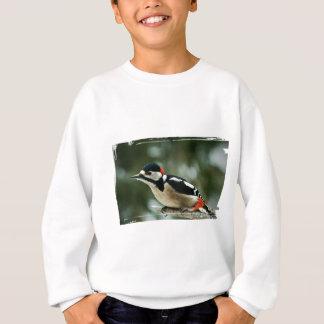 Multicolored woodpecker - Photography Jean Louis Sweatshirt