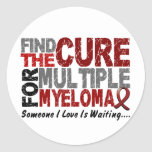 Multiple Myeloma FIND THE CURE 1 Round Stickers