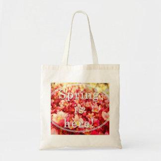 Multipurpose purse budget tote bag