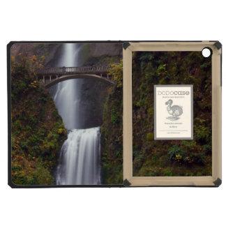 Multnomah Falls in late Autumn iPad Mini Cases