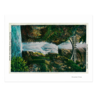 Multnomah Falls on Columbia River Postcard
