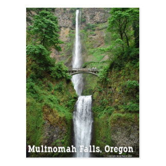 Multnomah Falls, OR Postcard