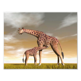 Mum and baby giraffe - 3D render Photo Print