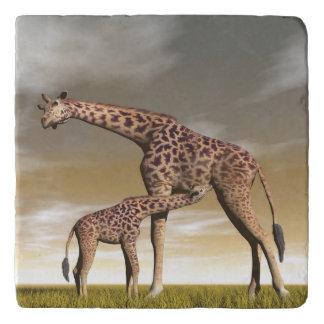 Mum and baby giraffe - 3D render Trivet
