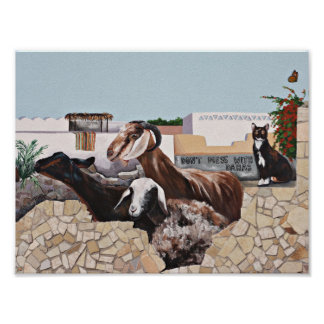 Munching Goats - Don't Mess with Dahab Poster