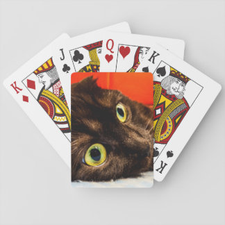 Munchkin Cat Cute Face Playing Cards