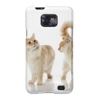 Munchkin cats galaxy SII case