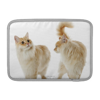 Munchkin cats sleeve for MacBook air