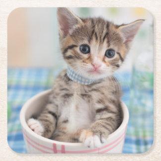 Munchkin Kitten With Pretty Ribbon Square Paper Coaster
