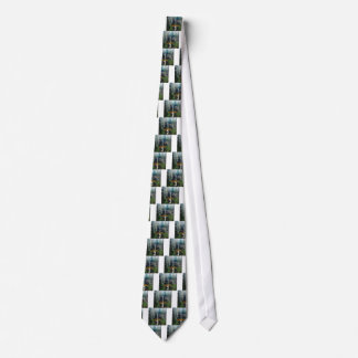 Munising Falls Upper Peninsula Michigan Tie