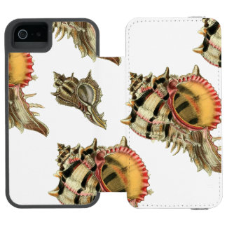 Murex sea shells vintage illustration incipio watson™ iPhone 5 wallet case
