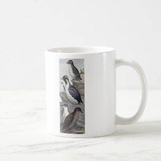 Murrelet Bird Coffee Mug