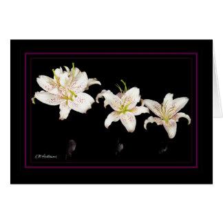 Muscadet lilies horizonal card