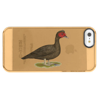 Muscovy Drake Chocolate Clear iPhone SE/5/5s Case