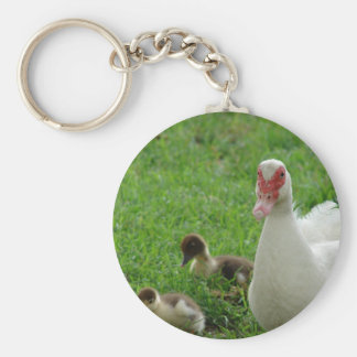Muscovy Hen And Ducklings Key Ring