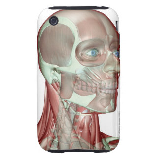 Musculoskeleton of the Head and Neck 5 Tough iPhone 3 Cover