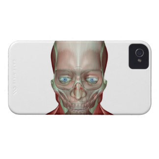 Musculoskeleton of the Head and Neck 7 iPhone 4 Case-Mate Case