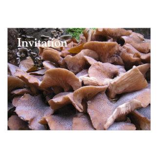 Mushroom 4 invite