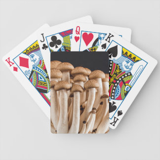 mushroom bicycle playing cards
