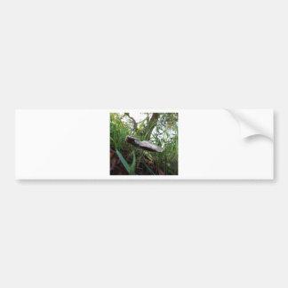 Mushroom Bumper Sticker