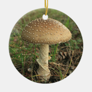 Mushroom Double-Sided Ceramic Round Christmas Ornament