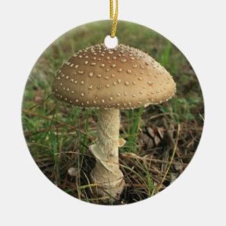 Mushroom Round Ceramic Decoration