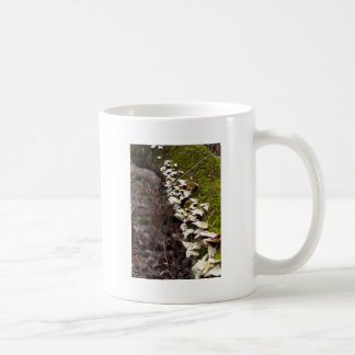 mushroom_downed tree_moss_winter coffee mug
