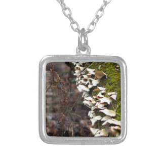 mushroom_downed tree_moss_winter silver plated necklace