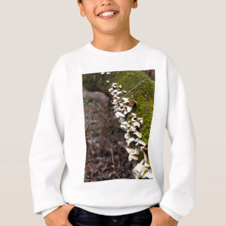 mushroom_downed tree_moss_winter sweatshirt