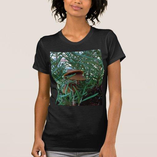 Mushroom Forest Shirts