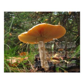 Mushroom Giant; 2013 Calendar Art Photo