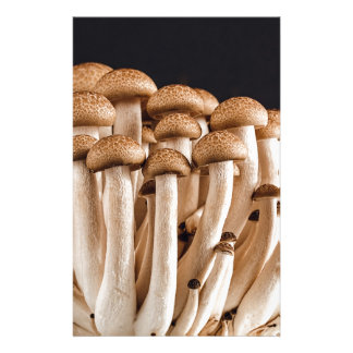 mushroom personalized stationery