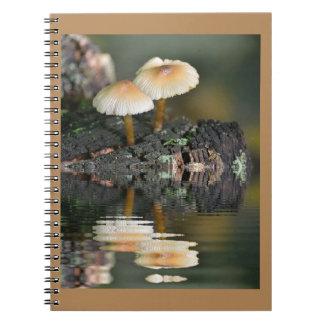 Mushroom Reflections Notebook