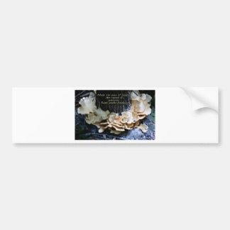 Mushroom ring bumper sticker