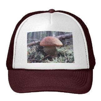 Mushroom shroomerrific trucker topper cap