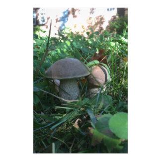 Mushrooms Custom Stationery