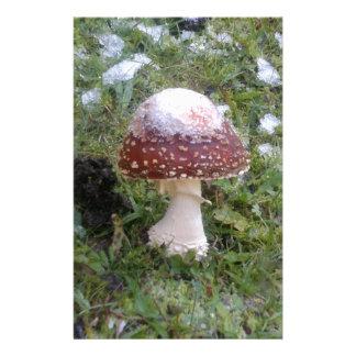Mushrooms Customised Stationery