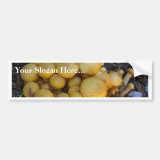 Mushrooms Fungus Bumper Sticker