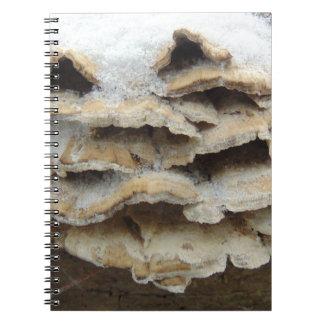 Mushrooms In Winter Notebooks