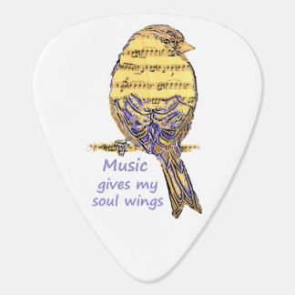 Music Gives my Soul Wings Music Note Bird Inspire Plectrum